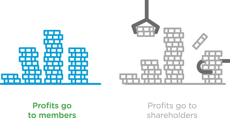 profit go to members x profits go to shareholders